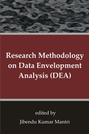 Data Envelopment Analysis Ebook